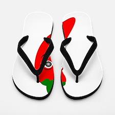 Red Chili Pepper Flip Flops
