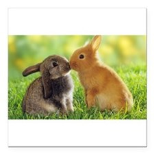 "Love Bunnies Square Car Magnet 3"" x 3"""