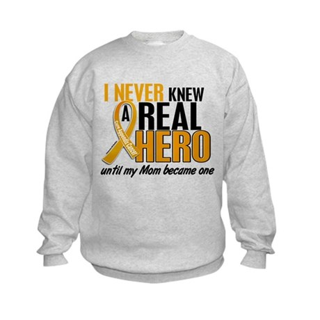 Never Knew a Hero 2 Appendix Cancer Kids Sweatshir