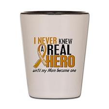Never Knew a Hero 2 Appendix Cancer Shot Glass