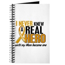 Never Knew a Hero 2 Appendix Cancer Journal