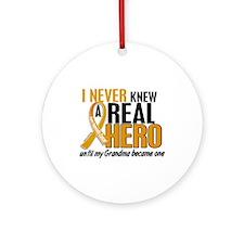 Never Knew a Hero 2 Appendix Cancer Ornament (Roun