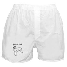 hector fass Boxer Shorts