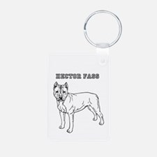 hector fass Keychains
