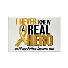 Never Knew a Hero 2 Appendix Cancer Rectangle Magn