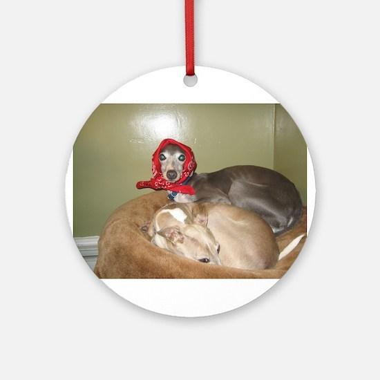 Italian greyhounds Ornament (Round)