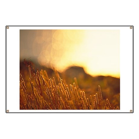 Wheaton Sunset Banner