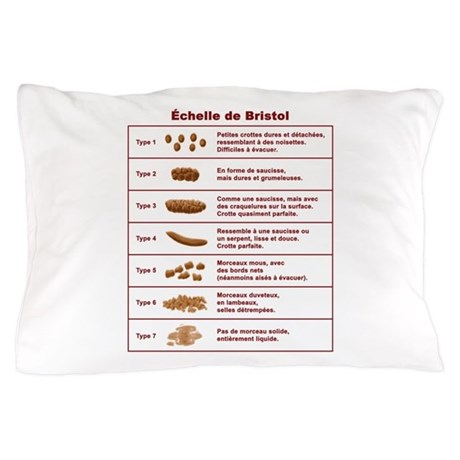 Échelle de Bristol Pillow Case