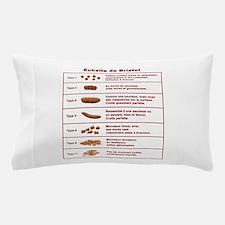 Échelle de Bristol Pillow Case
