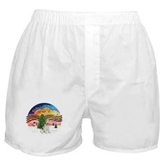 XMusic2-Wire Fox T4 Boxer Shorts