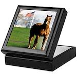 Save America's Horses Keepsake Box