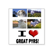 "Great Pyrenees Square Sticker 3"" x 3"""