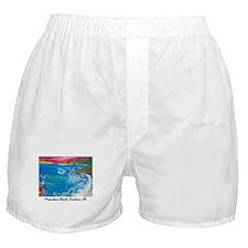 Moonstone Beach Cambria 700.jpg Boxer Shorts