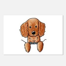 Pocket Irish Setter Pup Postcards (Package of 8)