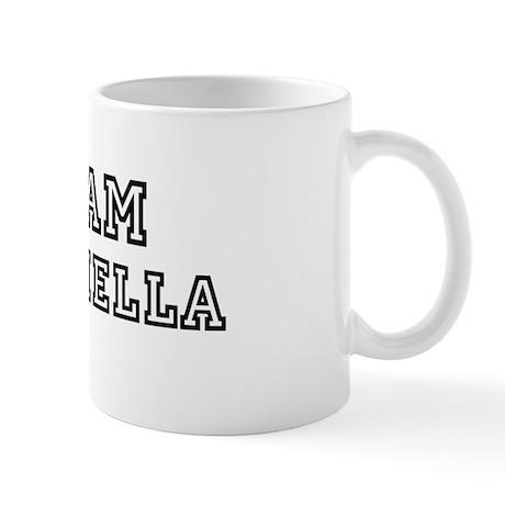 Team Coachella Mug