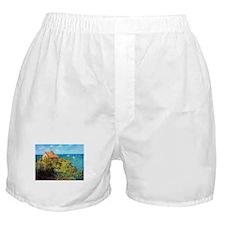 Claude Monet Fisherman's Cottage Boxer Shorts