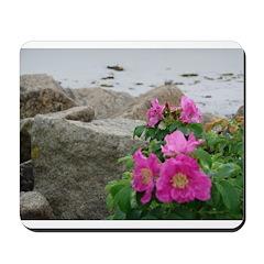 BEACH PLUMS™ Mousepad