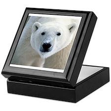 Polar bear Keepsake Box