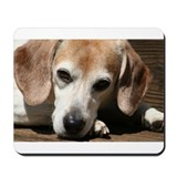 Beagles Mouse Pads