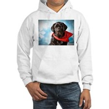 Off Into The Blue Yonder Hoodie