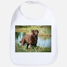Chocolate Labrador Ready for the Hunt Bib