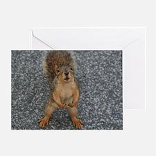 Squirrel Fiend - Greeting Card