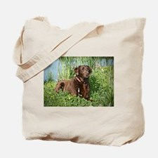 Waiting for Action Tote Bag