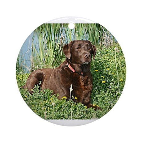 Chocolate Lab Ornaments   1000s of Chocolate Lab Ornament Designs