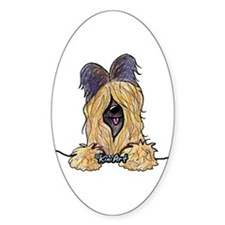 Pocket Briard Decal