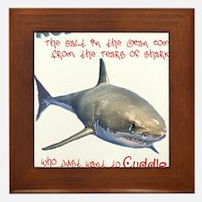 The Tears of a Shark (Non-Redundant) Framed Tile