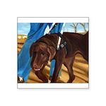 IMG_8135-pc1-16x20crop.JPG Square Sticker 3