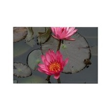 Lillies Rectangle Magnet