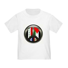 Peace in the Middle East T