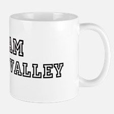 Team Silicon Valley Mug