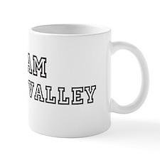 Team Silicon Valley Small Small Mug