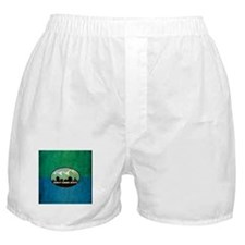 Vintage Salt Lake City Flag Boxer Shorts