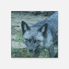"""Silver Fox Square Sticker 3"""" x 3"""""""