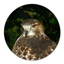 Red-tailed Hawk Round Car Magnet