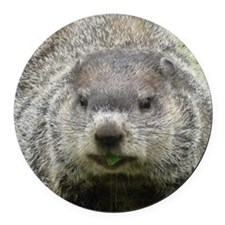 Groundhog Eating Round Car Magnet