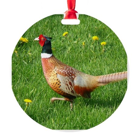 Ring-necked Pheasant Round Ornament