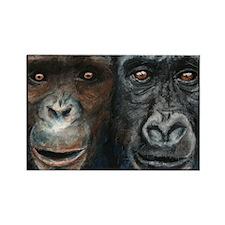 Gorilla and Chimp Rectangle Magnet