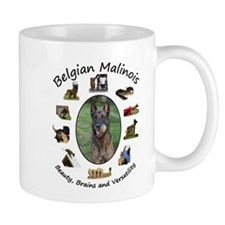 Belgian Malinois - Beauty, Brains and Versatility
