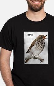 Hermit Thrush T-Shirt
