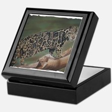 Clouded Leopard Pastel Drawing Keepsake Box