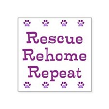 The 3 Rs needed for successful fostering! Square S