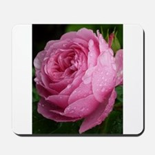 pink rose with raindrops Mousepad