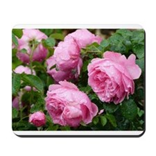 pink roses with raindrops Mousepad