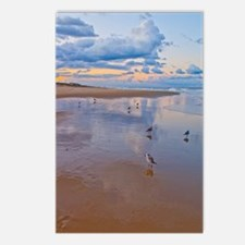 Ocean Birds at Sunrise Postcards (Package of 8)