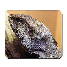 Lizard - Mousepad