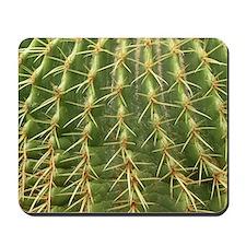 Cactus - Mousepad